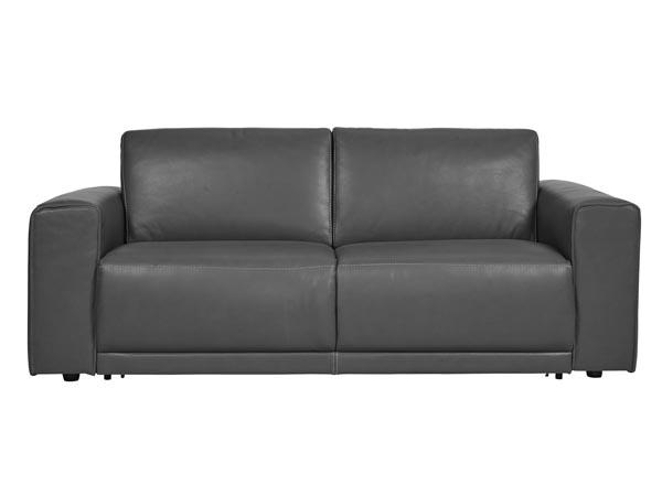 Rent the Eden Sleeper Sofa | CORT Furniture Rental