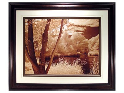 Lakefront View I Wall Art