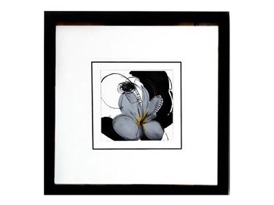 Rent the Sweet Baby Roses I Framed Artwork