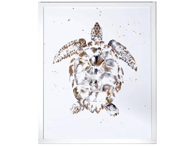 Rent the Sea Turtle Framed Artwork