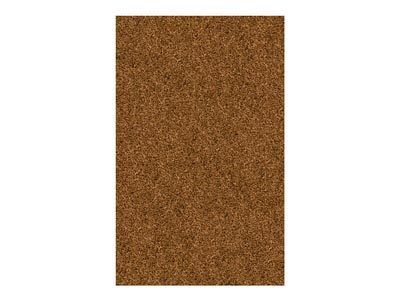Rent the Casual Elegance Bronze 5' x 8' Area Rug