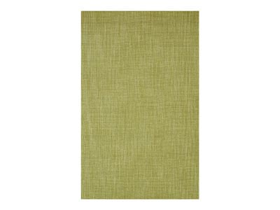 Rent the Monaco 5' x 8' Sisal Aloe 5' x 8' Area Rug