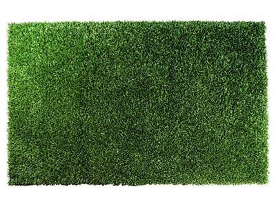 Shag Green 9'x9' Area Rug