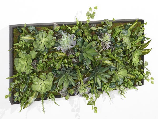 Rent the Rectangle Living Wall