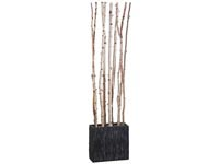 Rent the Birch Divider