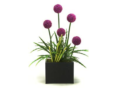 Rent the Pink Flowers with Grasses Plant