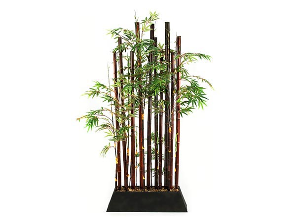 Rent the Bamboo Plant Divider