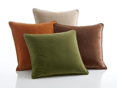 Rent the Terra Pillow Pack