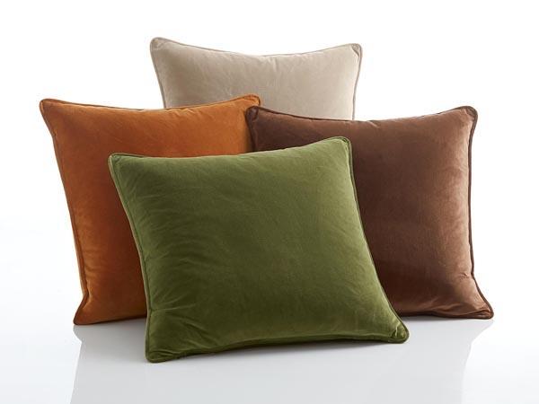 Rent the Terra Pillow Pack