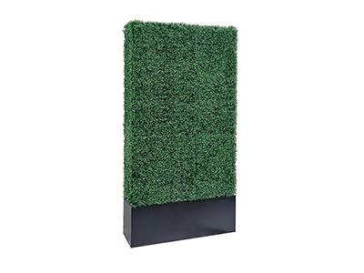 Boxwood Column