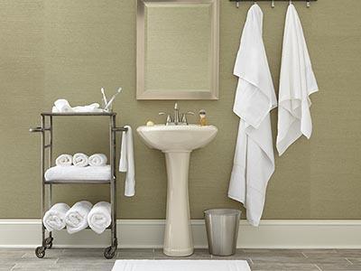 Rent the Bathroom Essentials & Hair Dryer