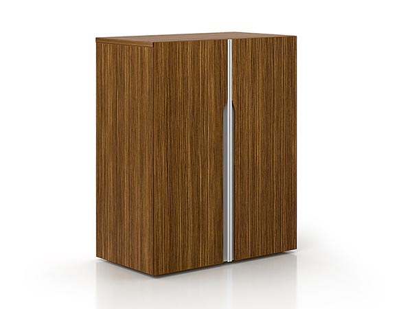 Rent the NEX 2 Door Cabinet