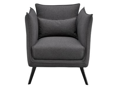 Rent the Brody Chair