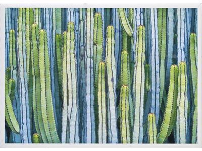 Rent the Cactus I Framed Artwork