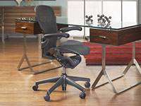 Aeron Seating