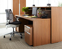 Nex Series (Natural Walnut)